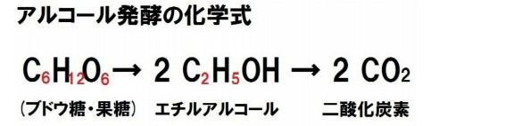 ブドウ糖がエチルアルコールと炭酸ガスに分解される「発酵」。酵母菌による生命の営み。